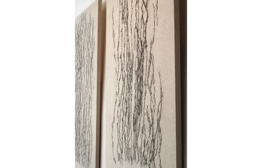 Série : Empreintes Sylvestres