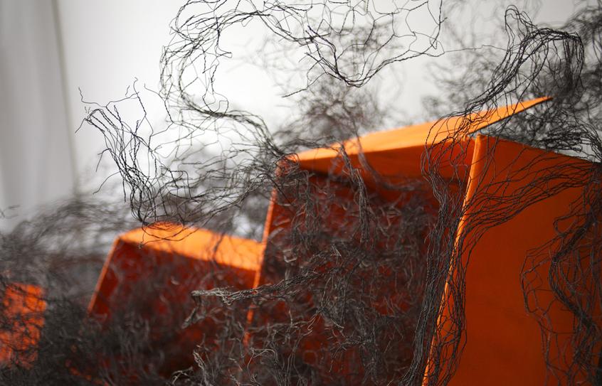 IMG_0571 Oranges 7