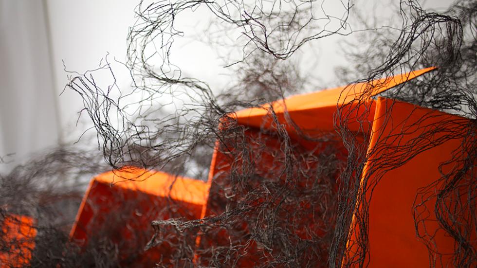 OrangesSauvages – Maria Cosatto